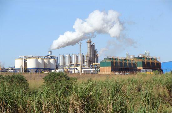 Importante vitória dos biocombustíveis