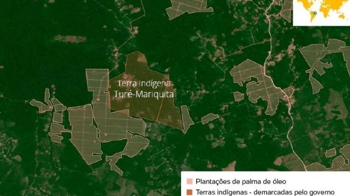 20210326 PalmaAmazonia MAPA1